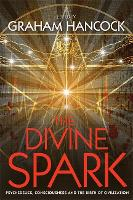 The Divine Spark: Psychedelics, Consciousness and the Birth of Civilization (Paperback)