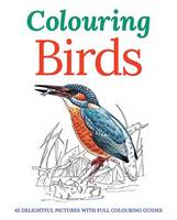 Colouring Birds (Paperback)