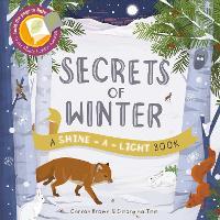 Shine a Light: Secrets of Winter: A shine-a-light book - Shine-A-Light (Paperback)