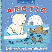 Arctic - Touch and Feel (Board book)