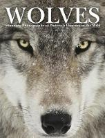 Wolves: Stunning Photographs of Nature's Hunters in the Wild - Animals (Hardback)
