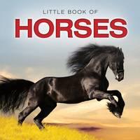 Little Book of Horses (Hardback)