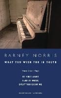 What You Wish for in Youth: Three Short Plays - Oberon Modern Playwrights (Paperback)