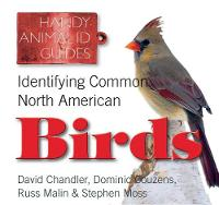 Identifying Common North American Birds - Handy Petcare Guides (Paperback)