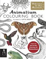 Animalium Colouring Book - Welcome To The Museum (Paperback)