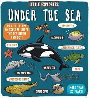 Little Explorers Under the Sea