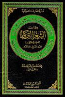 Diwan of Turkish Poetry: 1 - Hussaini Encyclopedia (Hardback)