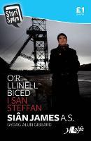 Stori Sydyn: O'r Llinell Biced i San Steffan (Paperback)