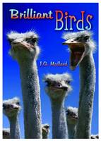 Brilliant Birds - Wow Facts (Gold) (Paperback)