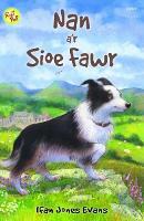 Cyfres Roli Poli: Nan a'r Sioe Fawr (Paperback)