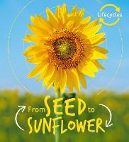 Lifecycles: Seed to Sunflower - LifeCycles (Paperback)