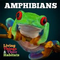 Amphibians - Living Things and Their Habitats (Hardback)