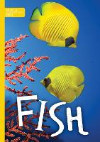 Fish - Animal Classification (Hardback)