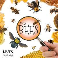 Busy Bees - The Lives of Minibeasts (Hardback)