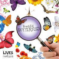 Beautiful Butterflies - The Lives of Minibeasts (Hardback)