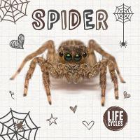 Spider - Life Cycles (Hardback)