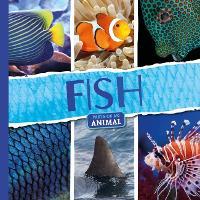 Fish - Parts of an Animal (Hardback)