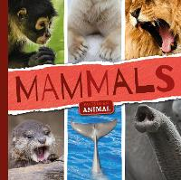 Mammals - Parts of an Animal (Hardback)
