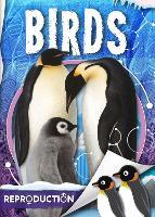 Birds - Parts of an Animal (Hardback)