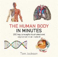The Human Body in Minutes - In Minutes (Paperback)