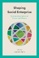 Shaping Social Enterprise: Understanding Institutional Context and Influence (Hardback)