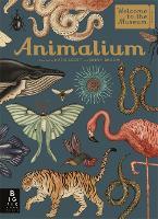 Animalium - Welcome To The Museum (Hardback)
