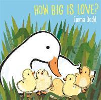 How Big Is Love? (Hardback)