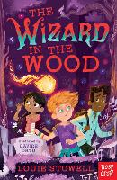The Wizard in the Wood - The Dragon In The Library (Paperback)