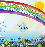 The Adventures of the little droplet