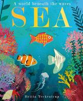 Sea: A World Beneath the Waves (Paperback)