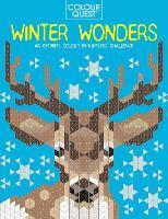 Colour Quest (R): Winter Wonders: An Extreme Colour by Numbers Challenge - Colour Quest (Paperback)