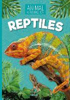 Reptiles - Animal Classification (Paperback)