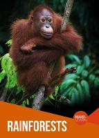 Rainforests - Discover and Learn (Paperback)