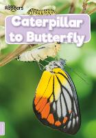 Caterpillar to Butterfly - BookLife Non-Fiction Readers (Paperback)