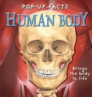 Pop-up Facts: Human Body - Pop-Up Facts (Hardback)