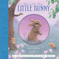 Time to Go Home Little Bunny (Hardback)