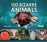 100 Bizarre Animals - Bradt Travel Guides (Wildlife Guides) (Hardback)