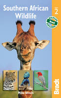 Southern African Wildlife - Bradt Travel Guides (Wildlife Guides) (Paperback)
