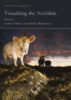Visualising the Neolithic - Neolithic Studies Group Seminar Papers 13 (Paperback)