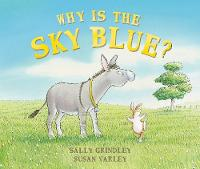 Why Is The Sky Blue? (Paperback)