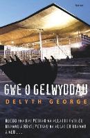 Gwe o Gelwyddau (Paperback)
