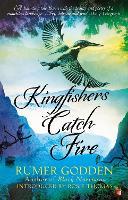 Kingfishers Catch Fire: A Virago Modern Classic - Virago Modern Classics (Paperback)