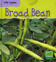 Broad Bean - Read & Learn: Life Cycles S. (Paperback)