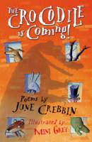 Crocodile Is Coming! (Paperback)