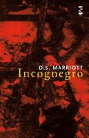 Incognegro - Salt Modern Poets (Paperback)
