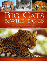 Big Cats and Wild Dogs (Paperback)