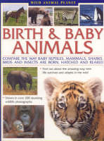 Wild Animal Planet: Birth and Baby Animals*** Out of Stock (Paperback)