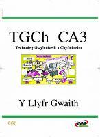 Technoleg Gwybodaeth a Chyfathrebu - Y Llyfr Gwaith (Paperback)