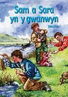Cyfres Hwyl Drwy'r Flwyddyn: Sam a Sara yn y gwanwyn (Llyfr Mawr) (Paperback)