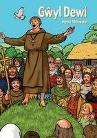 Gwyl Dewi (llyfr Mawr) - Cyfres Hwyl Drwy'r Flwyddyn (Paperback)